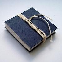 Leporello Artist's book. Jeni Ross